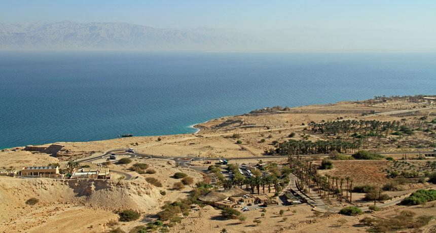 Ancient Dead Sea Communities
